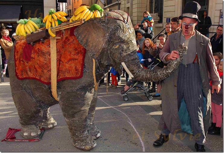 aw-Carpentras Noëls Insolites Baby Elephant 17.12.2016a